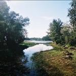 18布爾津河1 (7).jpg