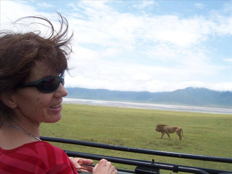 Maman•lion•Ngorongoro