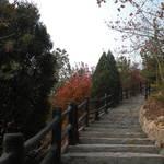 北宮森林公園