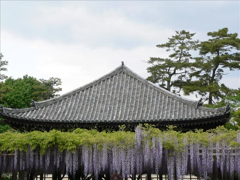 Kyoto012.JPG