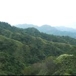 頭嵙山 (102).JPG