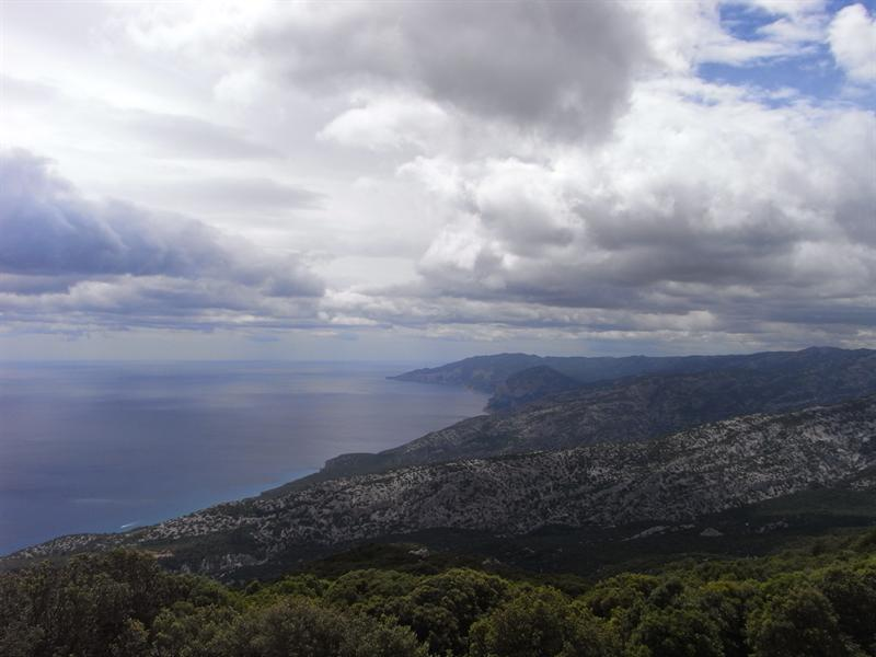 Panorama from the Tului Mountain