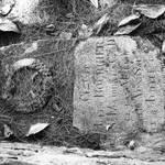 Ancienne tombe cimetierre les Saintes.jpg