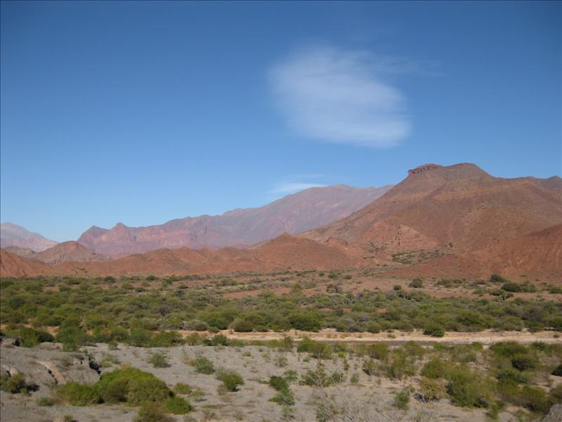 Cafayete scenery