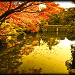 Sorakuen Garden (Warm Colors)