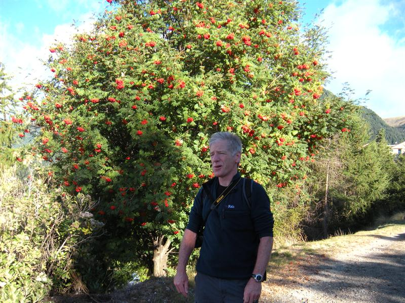 Pete and a Rowan tree at Queenstown