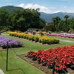 Gardens of Villa Taranto - Lago Maggiore