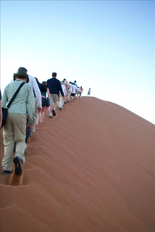 climbing the dune / grimper la dune