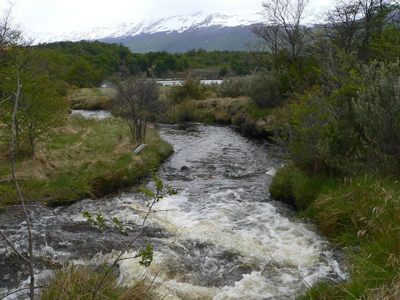 National Parc Tierra del Fuego