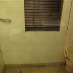 Shower 302