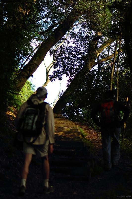 元荃古道 Yuen Tsuen Ancient Trail