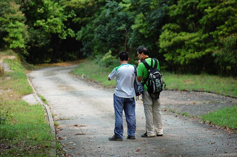 右接大埔滘林道乾坑段 Tai Po Kau Forrest Track Kon Hang Section
