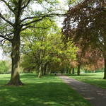 Abington Park - May 2014