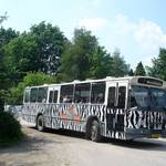Bus-safari Brabant excursie