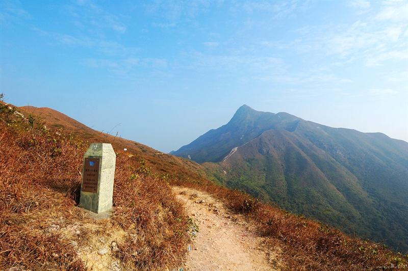 從山徑遠望蚺蛇尖 接著左轉上山
