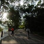 梅子林路 Mui Tsz Lam Road