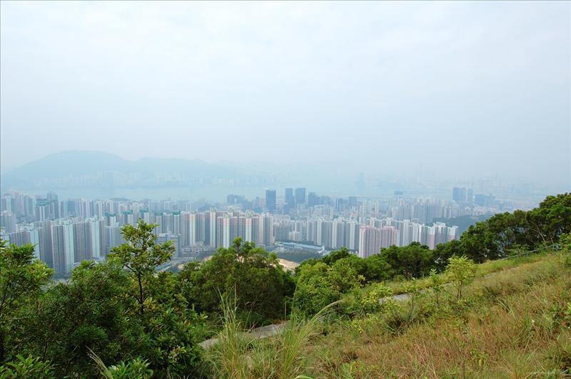 可觀看秀茂坪及九龍東市區景致