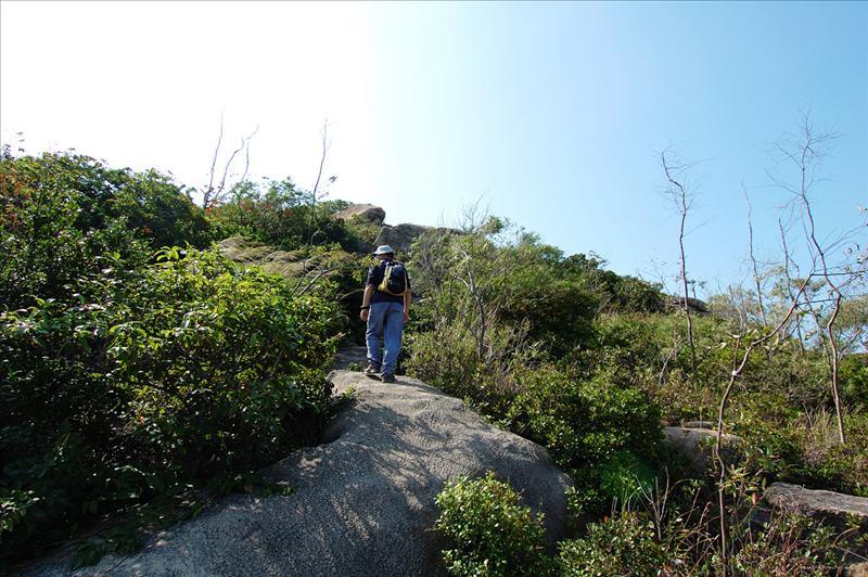 該區屬火山岩粗面質凝灰岩,沿途散布大小不一岩石