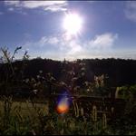 Aerovita_Sun5.JPG