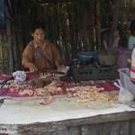 Indonesië, Flores en Lombok
