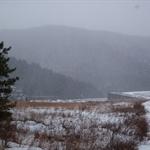 1-15-16-2011 027.jpg