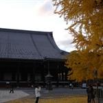 Nishihonganji09,12,6 14.jpg