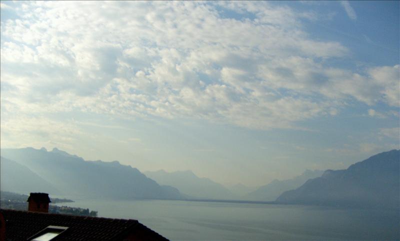 Lavaux•lac•2008