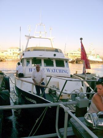 V&A Cruises