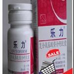 促销模板2010奶茶 乐力.jpg
