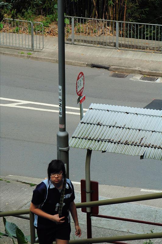 出大埔道 Tai Po Road