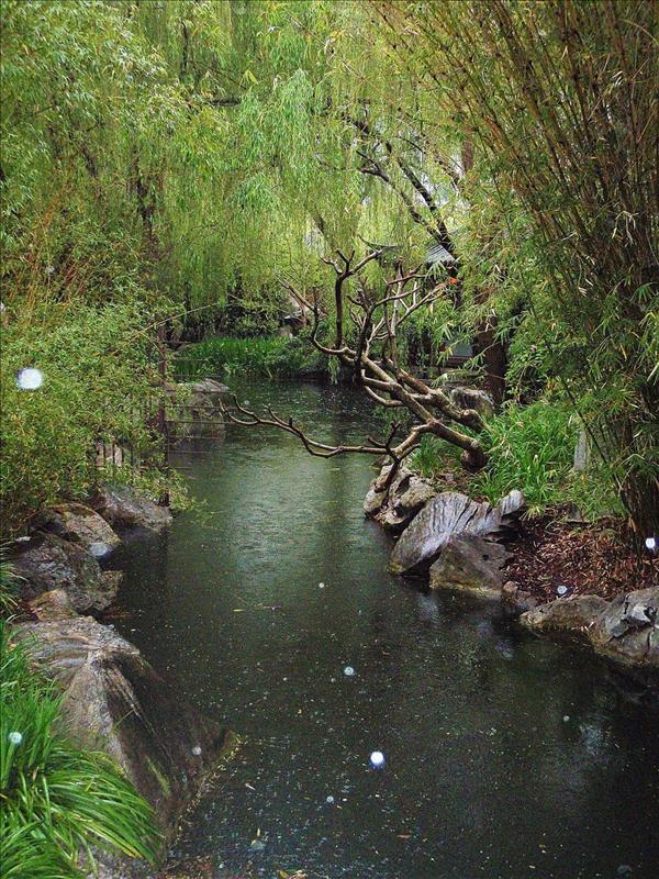 Chinese Gardens - Sydney