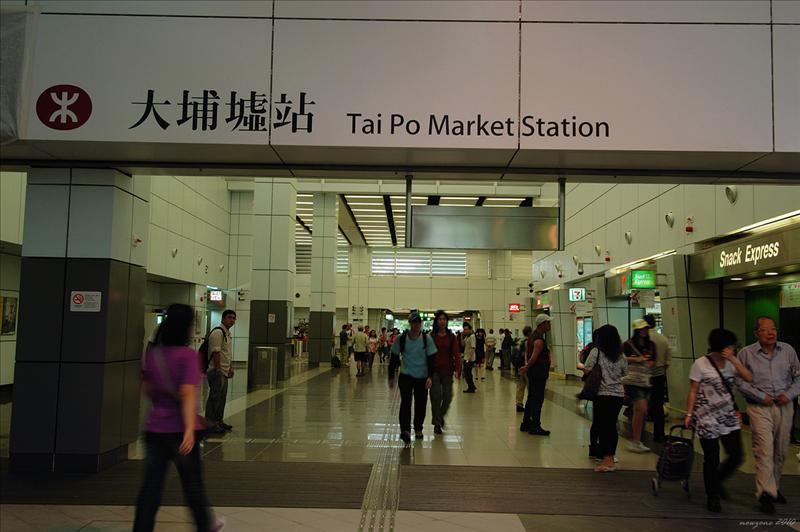 大埔火車站起步 Start at Tai Po Market Station