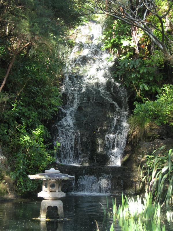 Botanical Gardens Wellington