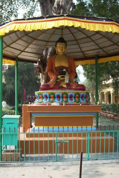 BUDDHA, TIBETAN MONASTERY, SARNATH