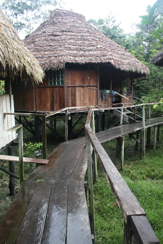 Caiman Hut - my lodge for the 4 days...