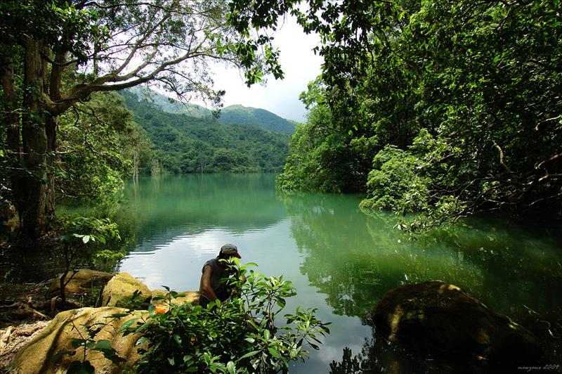 The landscape around Shing Mun Reservoir 城門水塘風光