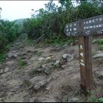 過大桐前往觀音峒 Tai Tung