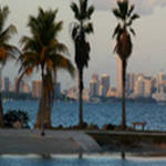 Fabulous Travel Destination: Miami