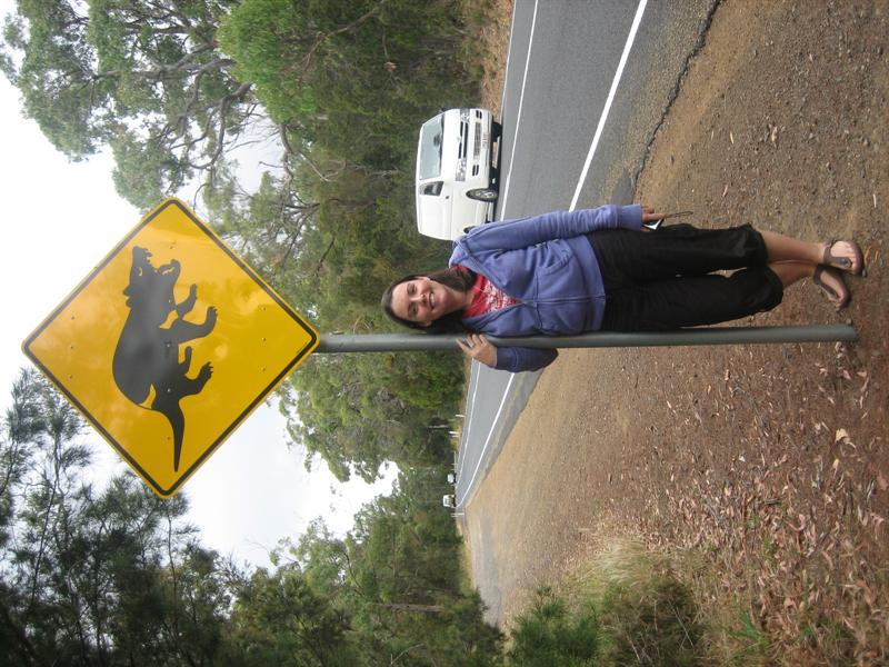 Tassie Devil Warning Sign!