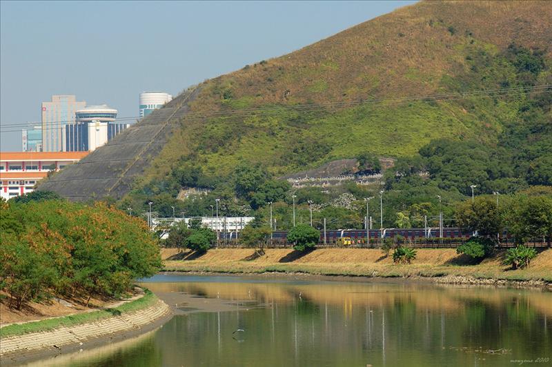 梧桐河 Ng Tung River (River Indus)