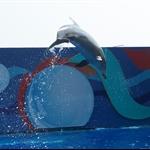 海洋公园海洋剧场海豚表演3.jpg