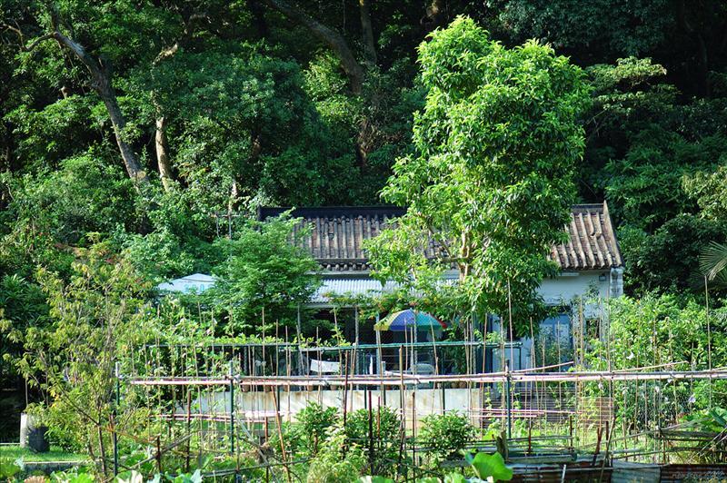 清快塘村 Ching Fai Tong