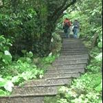 401登山步道 (2).JPG