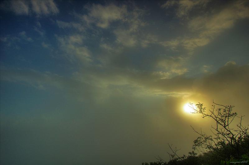 太陽升上半空才現身