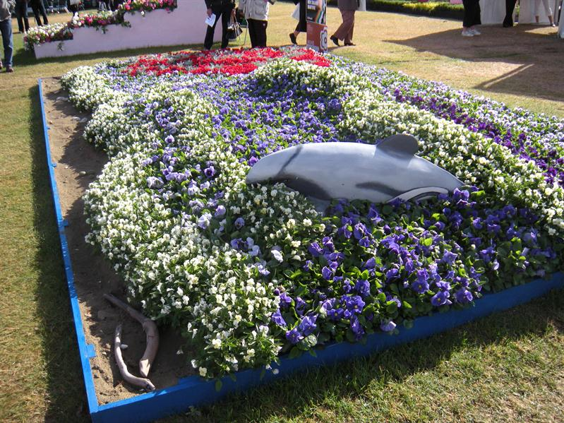 The Akaroa display at the Ellerslie Flower Show