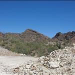 more desert loveliness