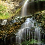 Cathedral_Falls,_French_Broad_Falls,_West_Virginia.jpg