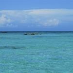 DIE blaue Lagune I.JPG