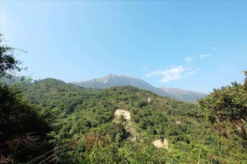 對面的彌勒山 Nei Lak Shan