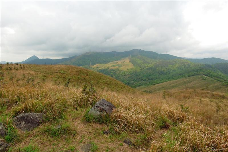 西面的針山及草山